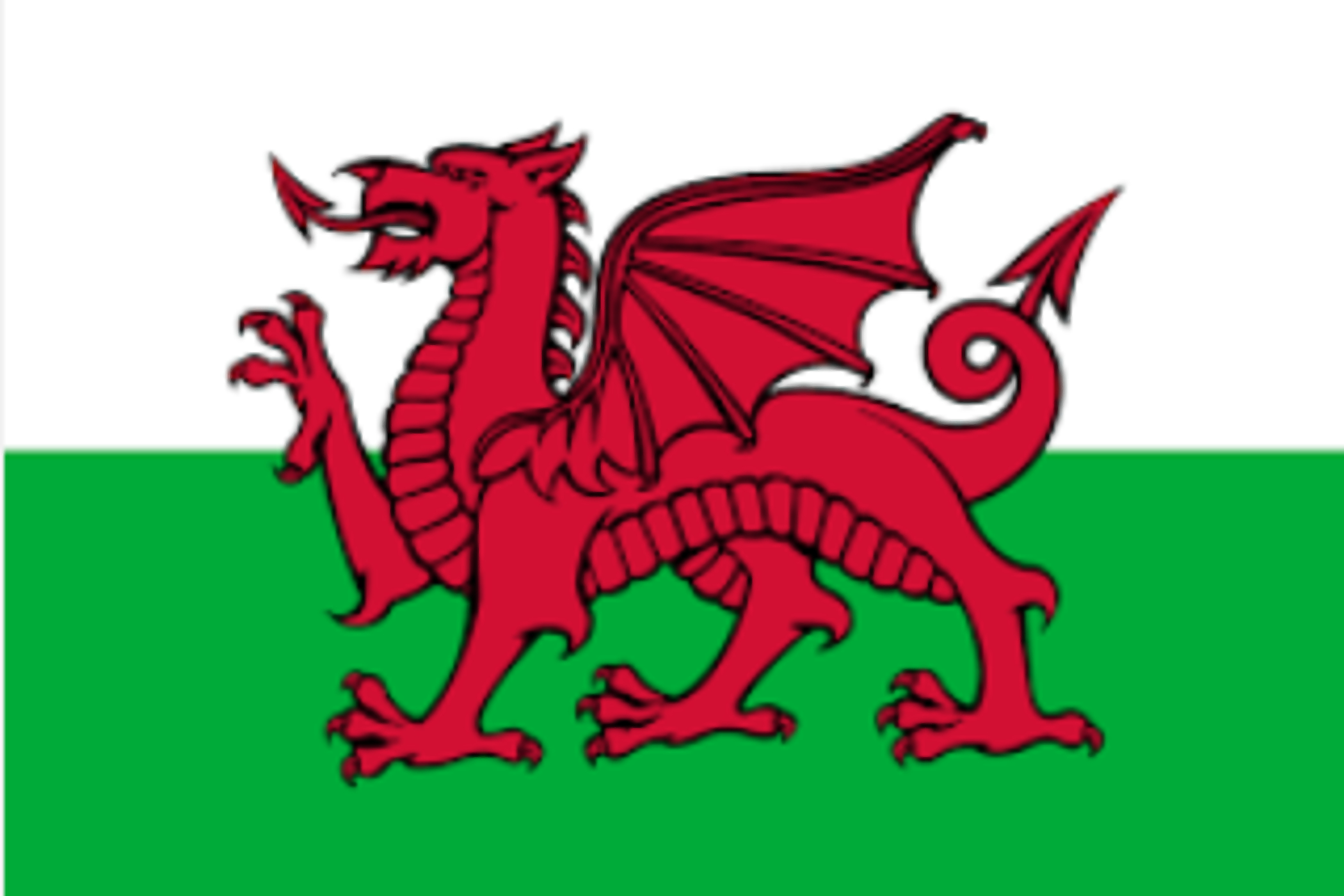Tag Category Family Welsh Products Online